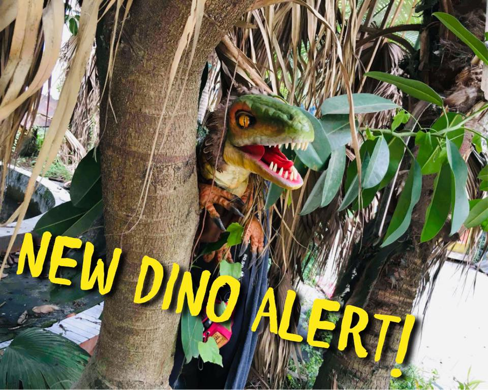 Dino6